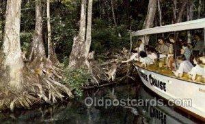 Florida USA Silver Springs, Jungle Cruise Ride Charter Boat, Unused