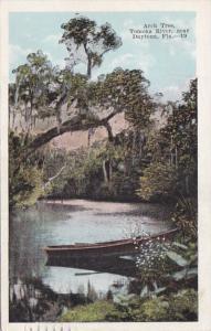 Florida Daytona Arch Tree On Tomoka River 1919