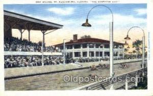 St Petersburg, FL USA Dog Racing, Old Vintage Antique Postcard Post Card  St ...