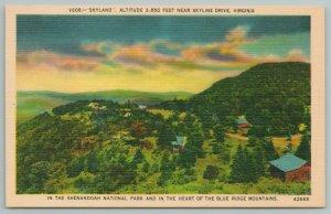 Skyline Drive Virginia~Shenandoah Park Blue Ridge Mts From Air~Vintage Postcard