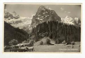 RP  Alpweiden bei Rosenlaui, Switzerland, PU-1936