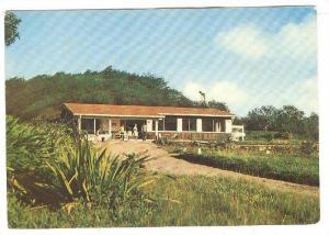 Montauberge restaurant, Martinique, Morne Rouge, France, 50-70s