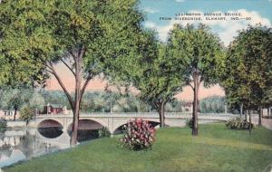 Lexington Avenue Bridge From Riverdrive Elkhart Indiana