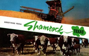 Texas Greetings From Shamrock