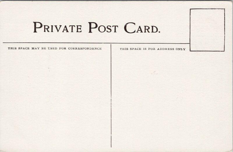 Toronto Ontario from Queens Park Unused Private Postcard G83