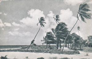 Beach , Sam Lord's Castle , TRINIDAD , 50-60s
