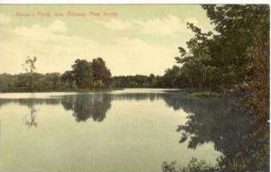 House's Pond, near Alloway, New Jersey, 1900-10s