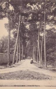 BEAUCHAMPS, Allee des Sapins, Manche, France, 00-10s