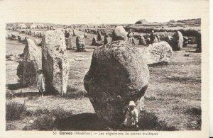 France Postcard - Carnac - Les Alignements De Pierres Druidiques - Ref TZ7913