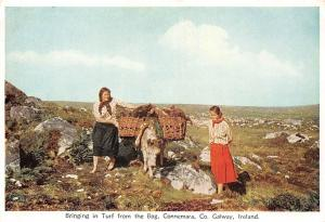 Bringing in Turf from the Bog, Connemara Co Galway