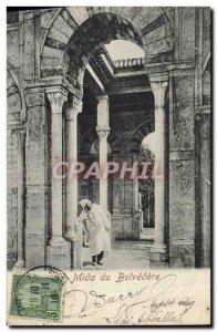 Old Postcard Tunisia Mida the Belevedere