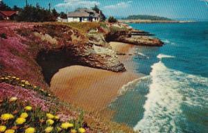 California Santa Cruz West Cliff Drive 1964