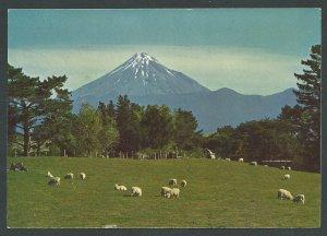 New Zealand  PC Mt. Egmont and the pasture land of Taranaki