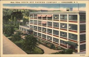 Canojohaire NY Beech Nut Packing Co Linen Postcard