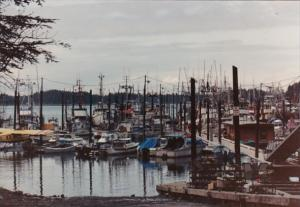 Alaska Yakutat Harbor Scene With Fishing Boats