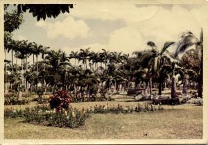 mauritius, View at Pleasure Ground (1963)