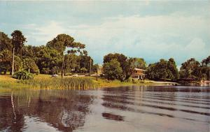 WINTER HAVEN FLORIDA AS SEEN FROM SPRING LAKE POSTCARD 1960s