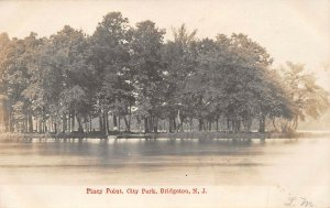 LPN34 Bridgeton New Jersey City Park Piney Point Postcard RPPC
