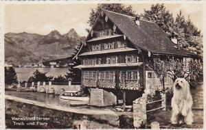 RP, Treib Und Flory, Dog, Vierwaldstattersee, Lake Lucerne, Switzerland, 1920...
