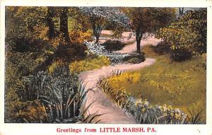 Advertising Post Card Little Marsh Dry Goods Store Greetings frm Little Marsh...