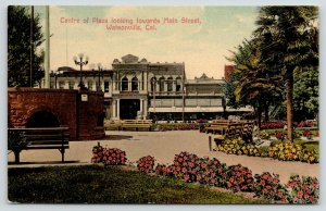 Watsonville California~Center of Plaza Towards Main Street~Bicycle Bkgd~c1910