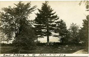 RPPC A View in East Jaffery - Cheshire County, New Hampshire pm 1906 at Rindge