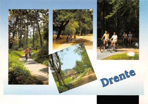 Netherlands Drente multiviews Cyclists Forest
