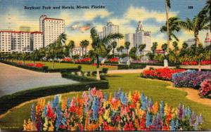 Florida Miami Bayfront Park and Hotels 1955