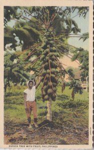 Philippines Native Standing Beside Papaya Tree With Fruit Curteich sk0840a