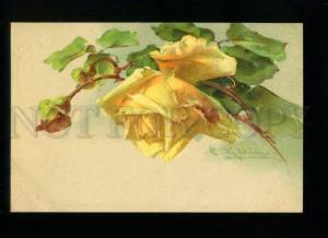 134607 Yellow ROSES by C. KLEIN vintage PFB colorful PC