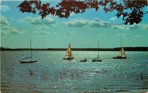 Interlochen Michigan~Sailboat Sailing @ Music Camp~1970 Postcard