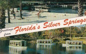 Greeting From Florida's Silver Springs Florida