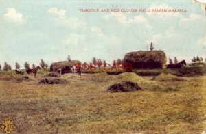TIMOTHY AND RED CLOVER FIELD, NORTH DAKOTA horsedrawn wagons