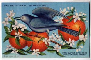 FL - Florida's State Bird, Mocking Bird; Flower, Orange Blossom