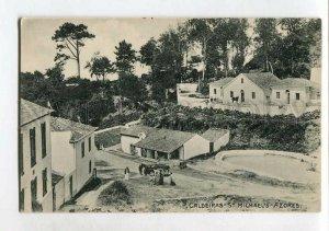 3144766 PORTUGAL Azores ACORES St.Michael's Caldeiras Vintage