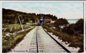 Old LAKE PEMAMAQUAN Maine Me Postcard Steam Engine Railroad WCRR Train