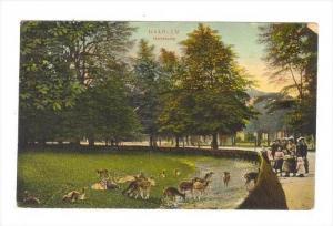 Hertekamp, Haarlem (North Holland), Netherlands, 1900-1910s