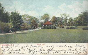 James Park, Madison, New Jersey, Early Postcard, Used in 1906
