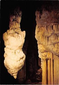 Slovenia Postojnska Jama Cave Grotte The Brilliant