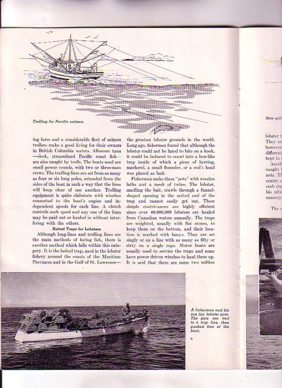 Purse Seines to Lobster Pots, Fishing, FH Wooding 1952, Depatment of Fisherie...