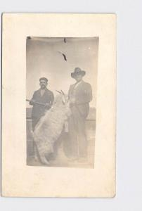 RPPC REAL PHOTO POSTCARD TWO MEN WITH WOOLLEY HORNED SHEEP
