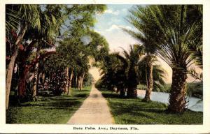 Florida Daytona Date Palm Avenue 1916