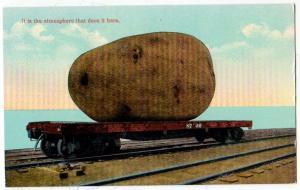 Extravaganza - Potato on a Railroad Car