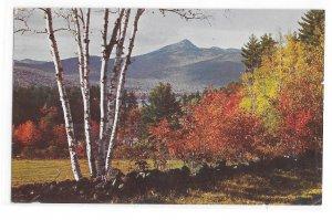 NH Mt Chocorua Winston Pote Autumn Landscape Vintage New Hampshire Postcard