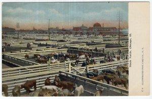 Chicago, Ill, Stock Yards