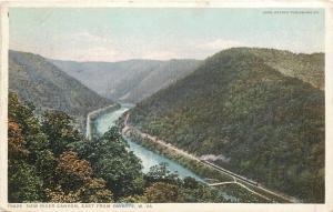 Fayette West Virginia~New River Canyon~Train on Railroad Tracks~1913 Detroit Pub