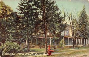 Erie Pennsylvania~Glenwood Park Hotel~Fancy Red Water Fountain? by Street~1911