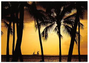 USA Hawaii Palm Trees Sunset Pirate Boat Bateau Coucher de Soleil