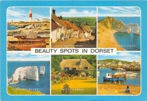 uk45891 beauty spots in dorset uk