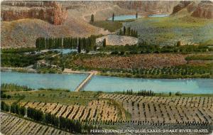 c1910 Postcard; 156 Perrine Ranch & Blue Lakes, Snake River ID Wesley Andrews